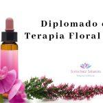 Curso-de-Terapia-Floral-Bach-1